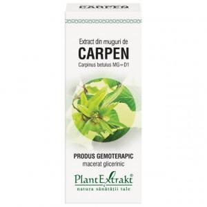 Extract din muguri de carpen 50 ml (CARPINUS BETULUS)