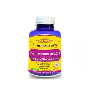 Cordyceps 10/30/1 - 120 cps