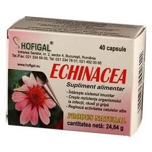 Echinacea capsule Hofigal