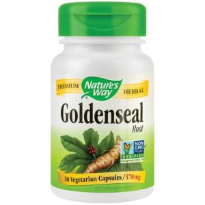 Goldenseal 570mg 30 capsule