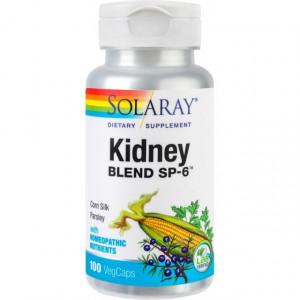 Kidney Blend SP-6 - 100 cps
