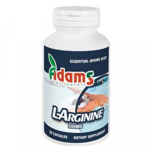 L-Arginine 500 mg - 90 cps