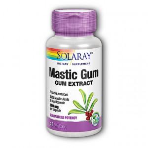 Mastic Gum - 45 cps