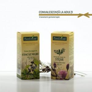 Tratament naturist - Convalescenta la adulti (pachete)