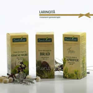 Tratament naturist - Laringita (pachet)
