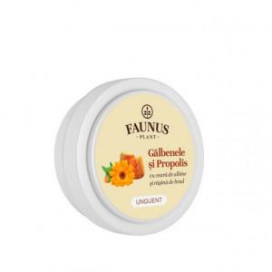 Unguent Galbenele si Propolis - 20 ml