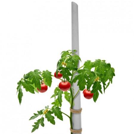 Kolčići - štapovi za paradajz 200cm - 10kom.
