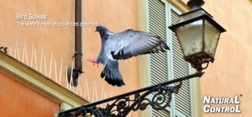 Šiljci za ptice - rasterivač golubova 3m Swissino Solutions