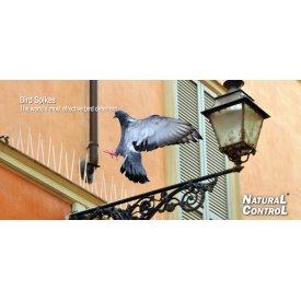 Šiljci za ptice - rasterivač golubova 1m Swissino Solutions