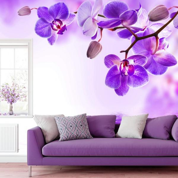 Fototapet Flori De Orhidee Mov-Violet ORST49
