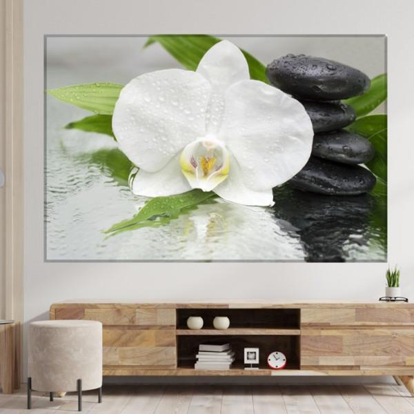 Tablou Canvas Orhidee Spa MSP55