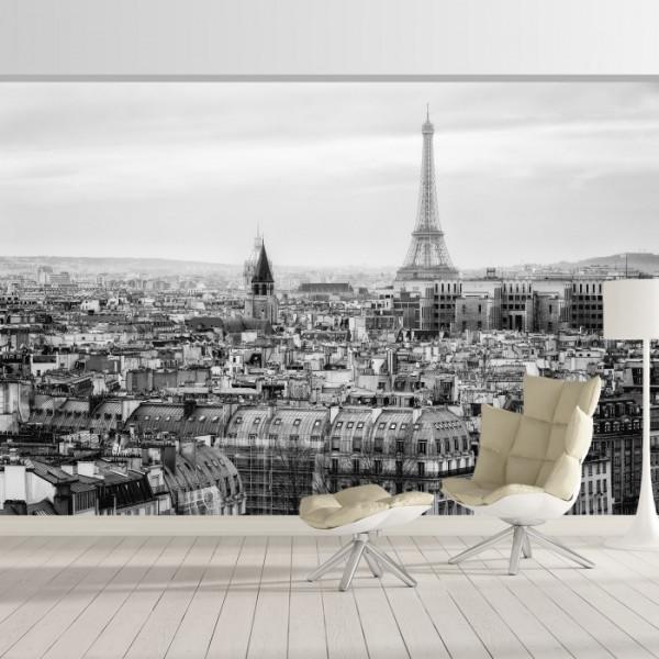 Fototapet Cladiri in Paris PGP14