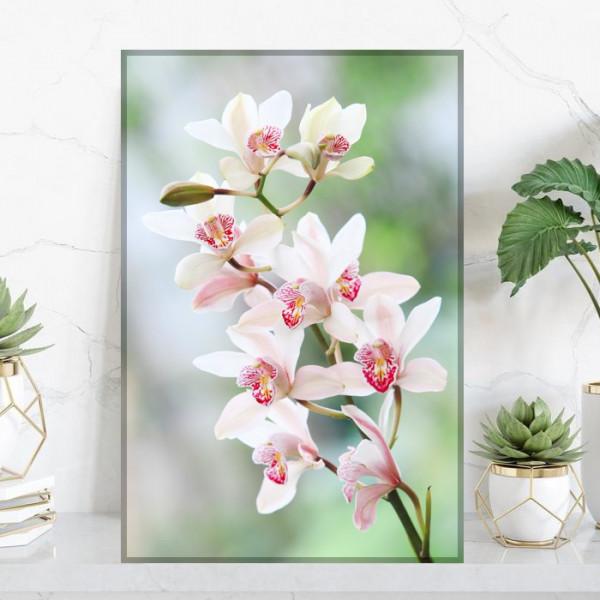 Tablou Canvas Ramura cu Flori de Orhidee ORST129
