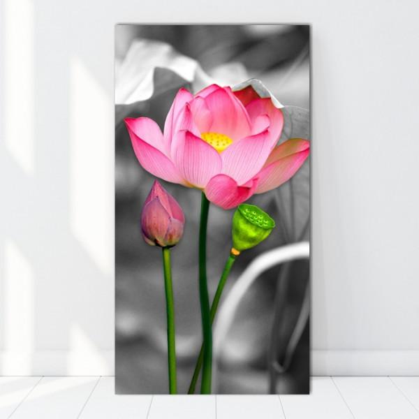 Tablou Canvas Zen Lotus FLN23