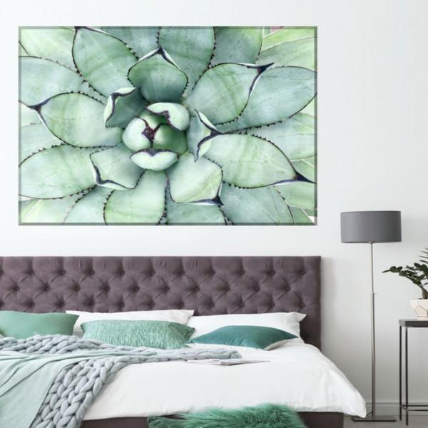 Tablou Canvas Planta Exotica Agave FRZ14
