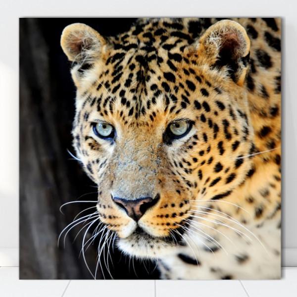 Tablou Canvas Leopard ATGR84