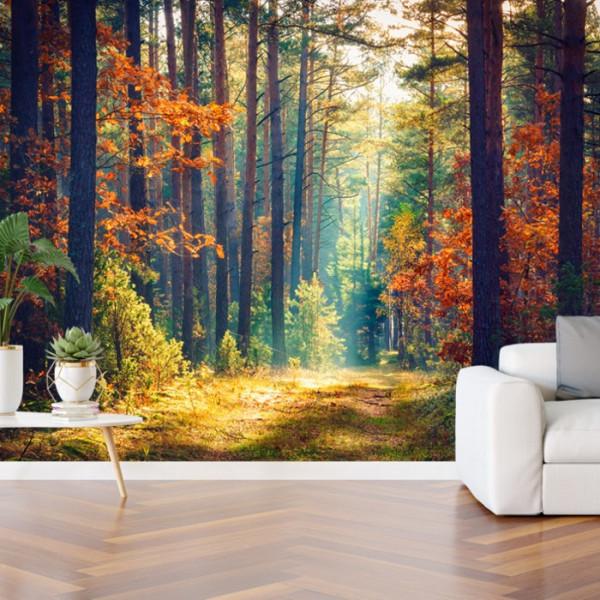 Fototapet 3D Peisaj Mirific cu Padure BNS51