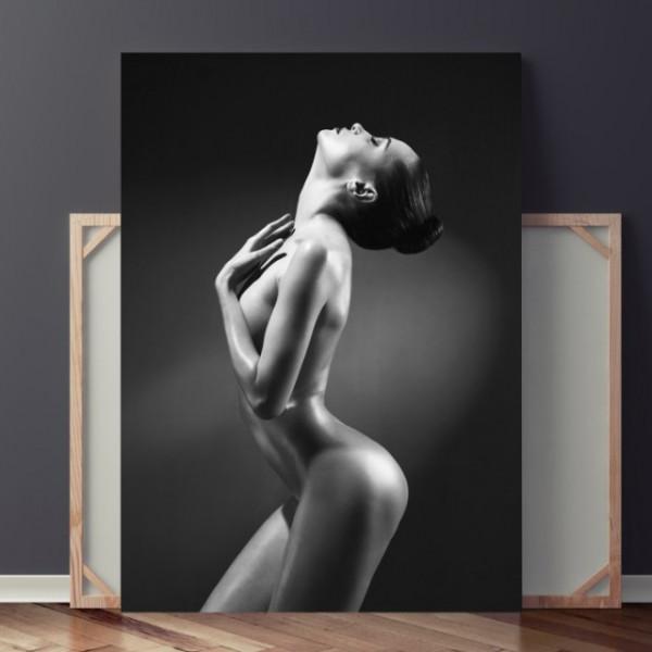 Tablou Canvas Forme Feminine Sexy SX80