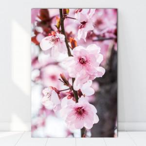Tablou Canvas Creanga cu Flori de Cires Japonez AAG7