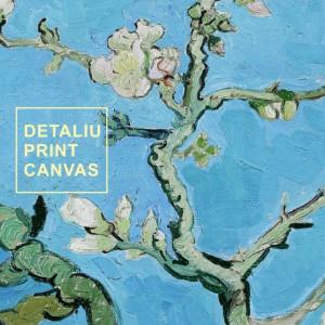 Tablou Van Gogh - Ramuri de Migdal Inflorit VVG2