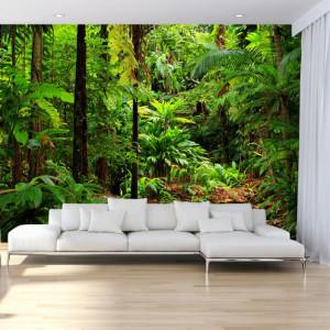 Fototapet 3D Padure Tropicala PFJ60