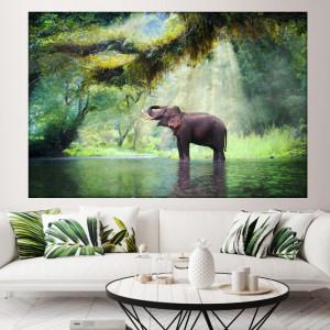 Tablou Canvas Elefantel Vesel in Rau ASJ15
