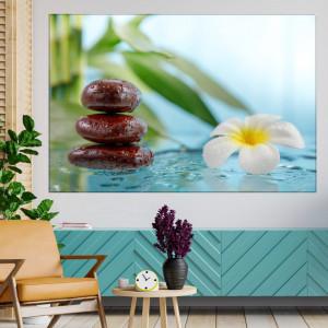 Tablou Canvas Parfumul Florii de Frangipani MSP54