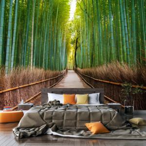 Fototapet 3D Padure Bambusi ST173