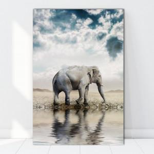 Tablou Canvas Elefant In Savana ASJ12