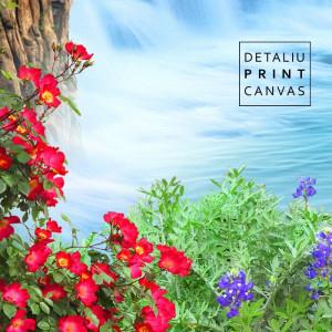 Tablou Canvas Peisaj de Vis cu Cascada si Cocori WTF84
