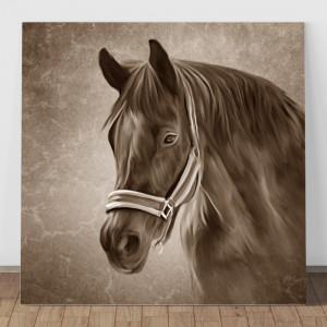 Tablou Canvas Portret Cal Sepia HPS9