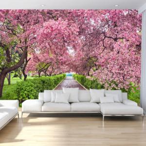 Fototapet 3D Alee In Parcul cu Flori de Cires BNS52