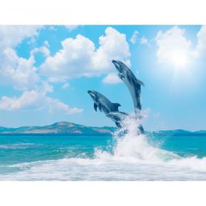 Fototapet 3D Delfini in Larg AQF51