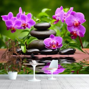 Fototapet Flori de Orhidee cu Pietre Spa BMOR62