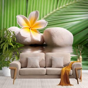 Fototapet Zen, Pietre Spa cu Floare si Frunza de Palmier SPA5
