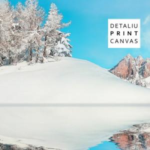 Multicanvas Reflexii Montane Iarna BTL50