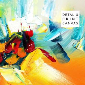 Tablou Canvas Mix Abstract de Rece si Cald CTB36