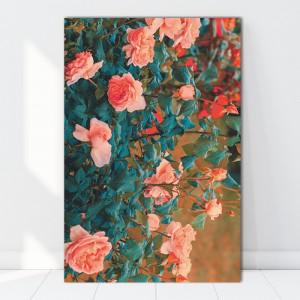 Tablou Canvas Trandafiri BES651