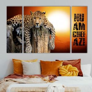 Multicanvas Set 3 Tablouri Leopard la Apus ATGR69