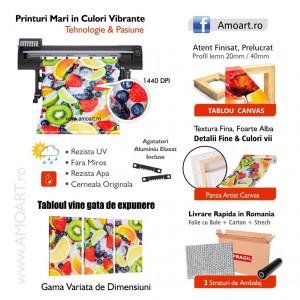 Tablou Canvas Bujor Rosu Printre Flori Albe CFB22