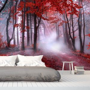 Fototapet 3D Padurea cu Frunze Rosii BNS50