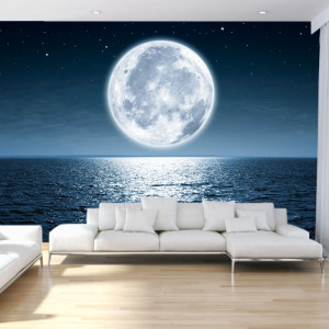 Fototapet 3D Reflexia Lunii in Mare OUS69