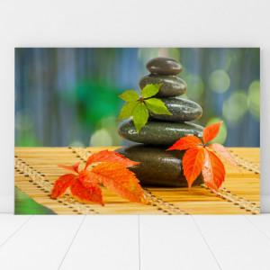Tablou Canvas Pietre Spa Cu Frunze de Artar MSP50