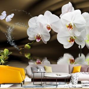 Fototapet 3D Orhidee Fresh cu Reflexii OPOS71