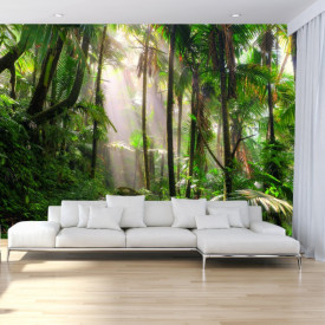 Fototapet 3D Padure Tropicala PFJ41