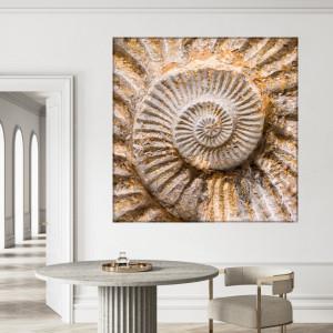 Tablou Canvas Spirala Melc ASCI2