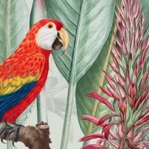 Fototapet Frunze Tropicale cu Flori si Papagali BES425