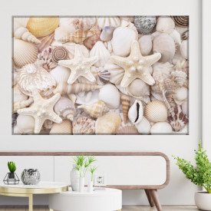 Tablou Canvas Ocean, Stelute de Mare cu Scoici ASCI4