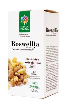 BOSWELLIA Flacon 60 cps 500 mg/capsula  NOU!!!! SANTO RAPHAEL