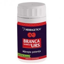 BRANCA MARELUI URS 60CPS HERBAGETICA